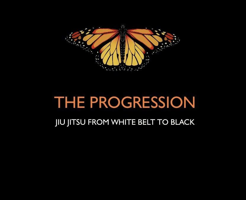 Best BJJ DVD For Beginners